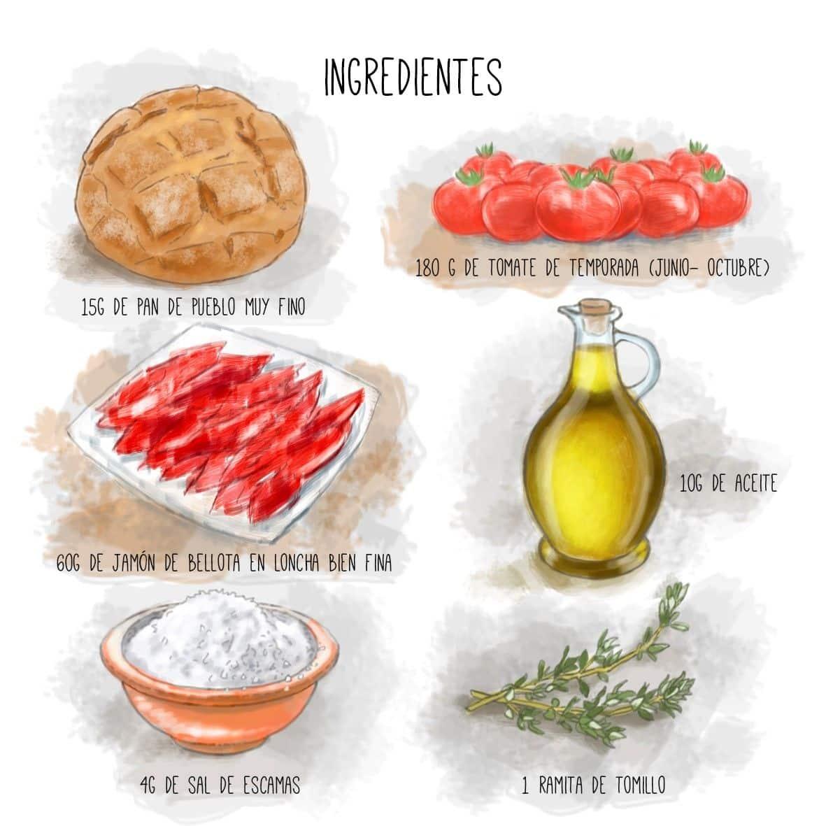 ingredientes-pan-con-tomate-y-jamon