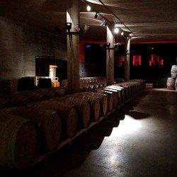 Vino rosso ecologico Enrique Tomás