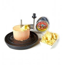 Girolle formaggio Tête de Moine